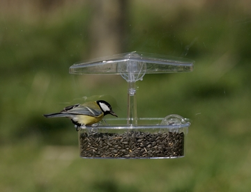 bird feeder with suction cups for windows-www.suctioncupsdirect.co.uk